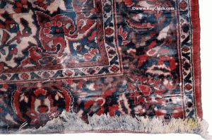 Mold on Wool Rug