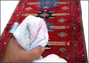 Dry towel picks up red from a rug easily