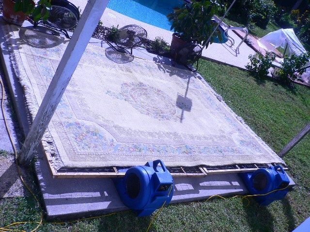 drying rugs outside