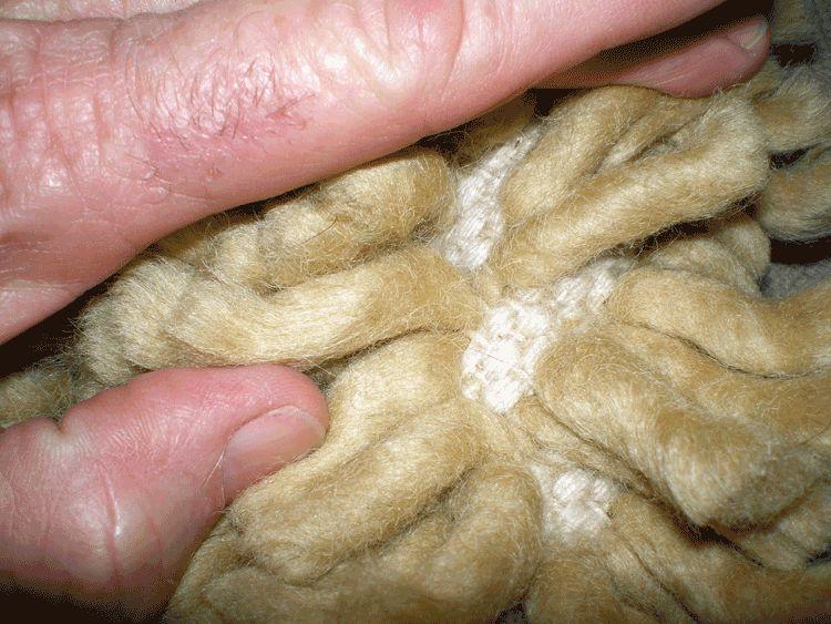 Noodle shag rug.