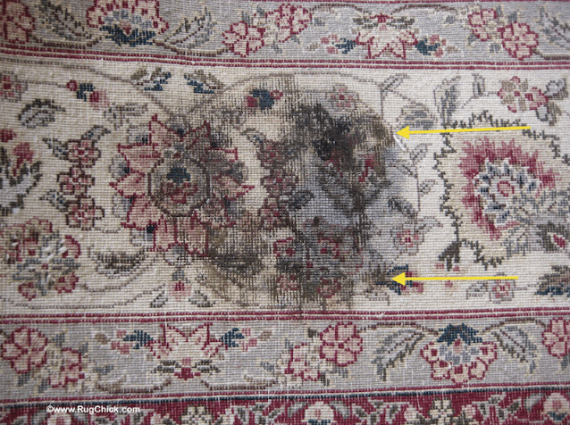Mold and Dry Rot in Rugs | Rug Chick